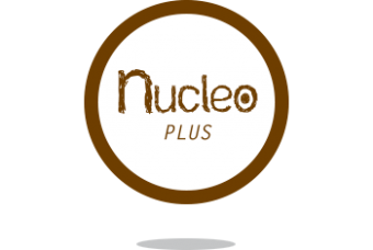 logo nucleo plus